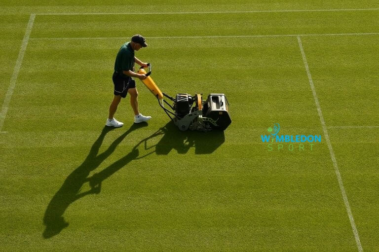 Maintainence & Cleaning Grass Tennis Court