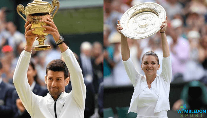 Wimbledon prize money 2020 - Complete Breakdown