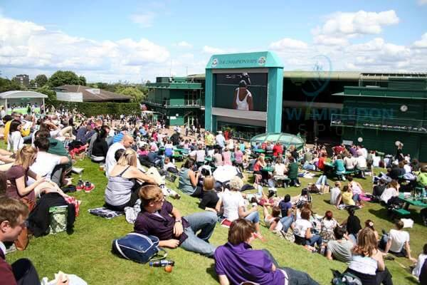 General Information about Wimbledon Entry Passes-image-buy get cheap Wimbledon tickets
